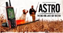 Cлежение за собаками Garmin Astro и Garmin Alpha